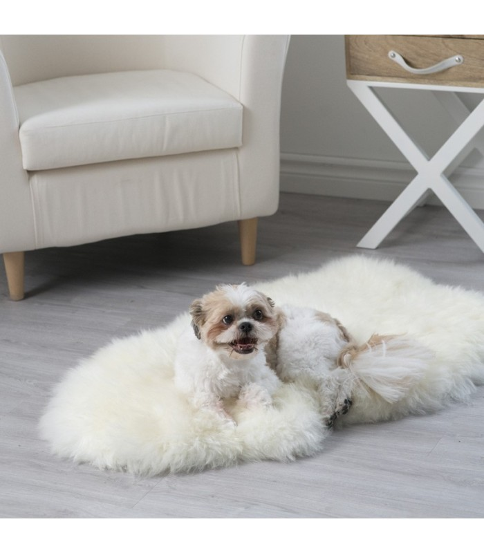 Ivory White Sheepskin Pet Rug (2x3.5 ft)